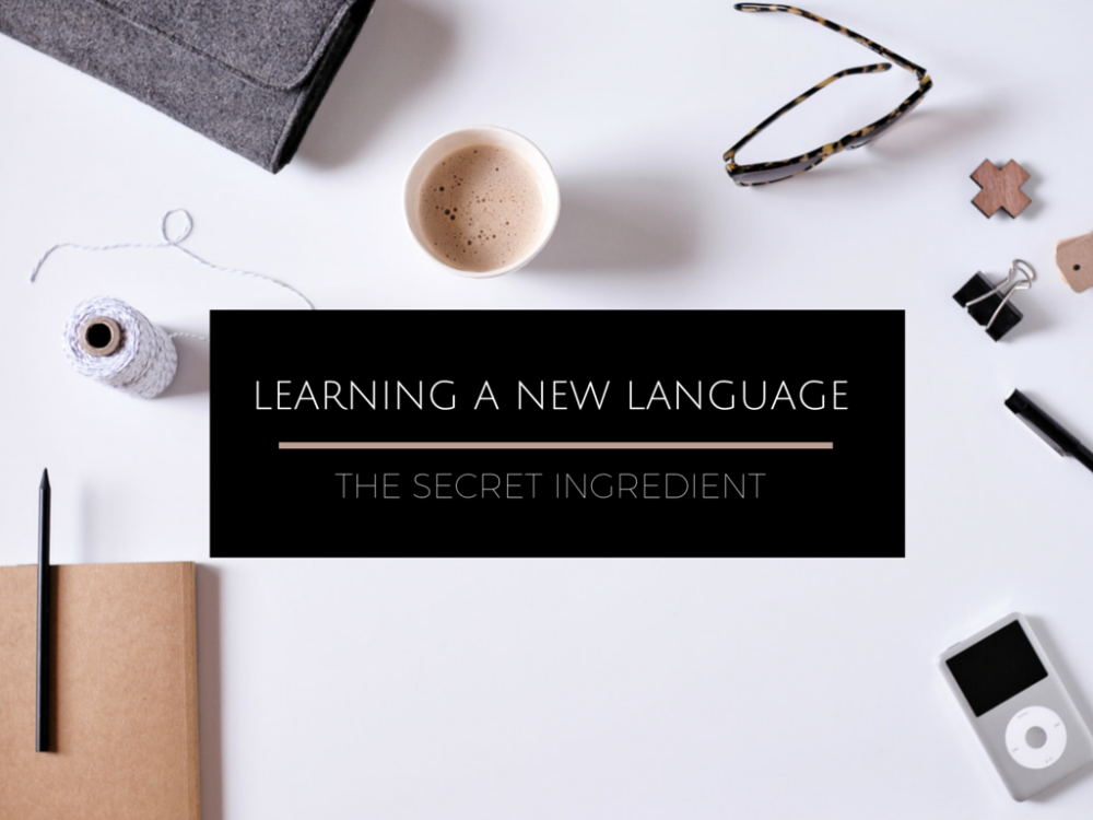 16 Must-Know Words and Phrases For Any Language